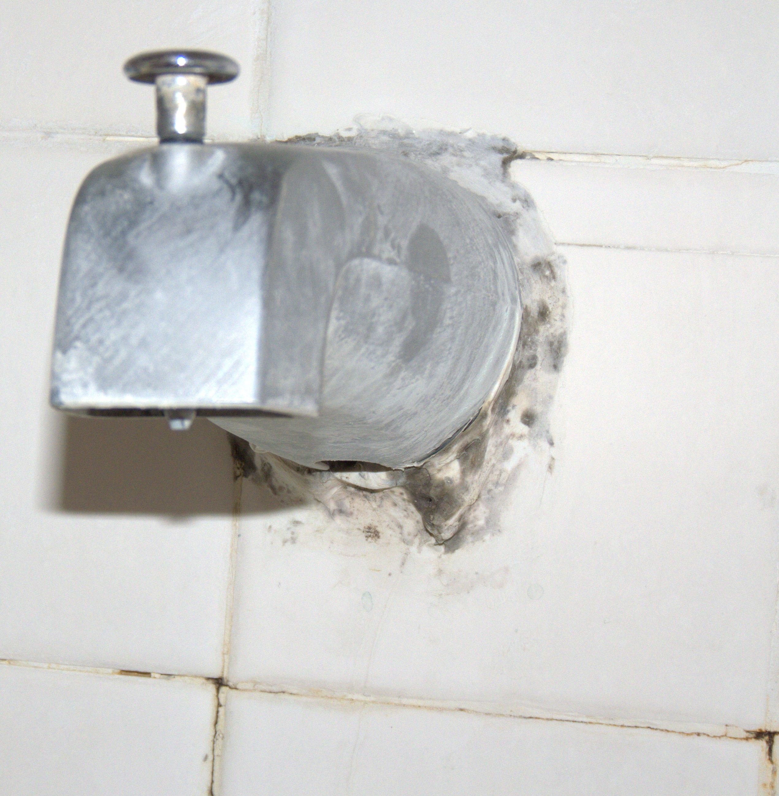 Faucet-bathroom-mold